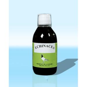Echinacea – jeżówka purpurowa dla gołębi IRBAPOL 250 ml