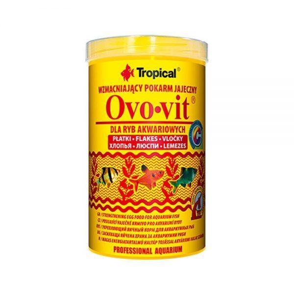 tropical-ovo-vit-1