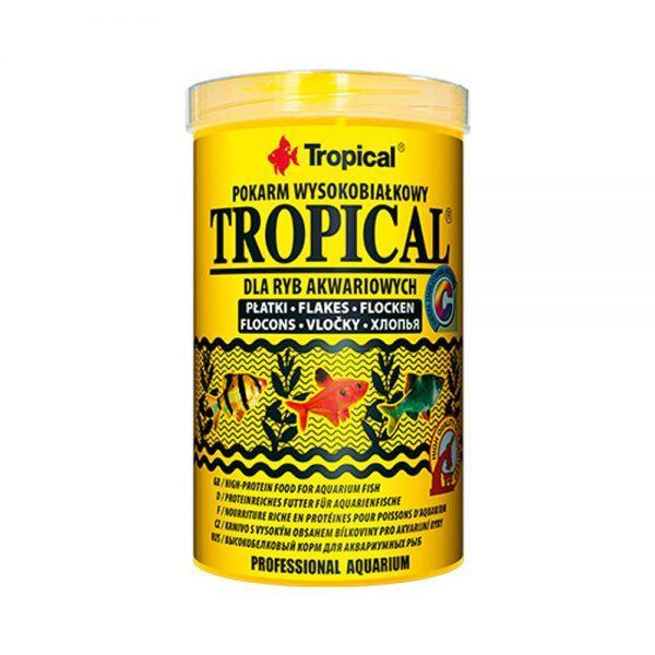 tropical-tropical-1