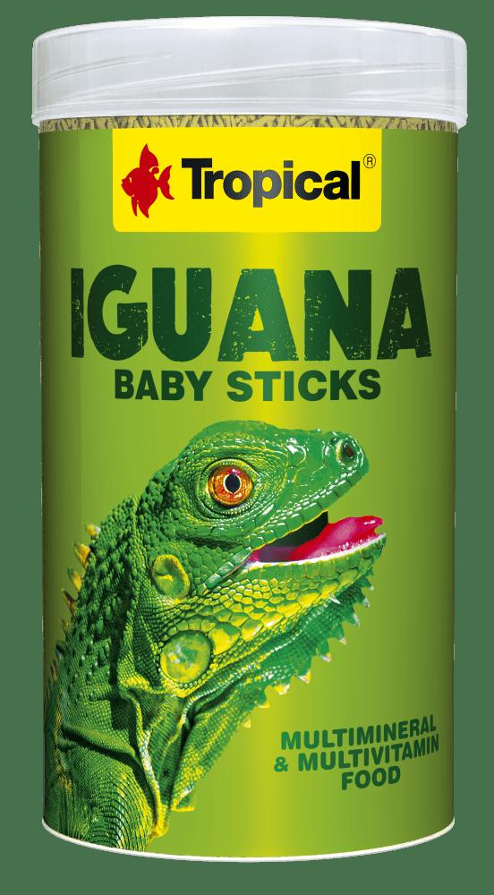 iguana-baby-sticks-250. 2