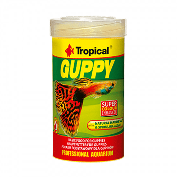 tropical-guppy-1