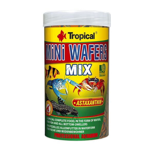 tropical-mini-wafers-mix-1