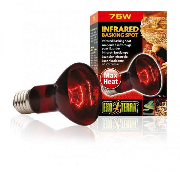 zarowka-infrared-basking-spot-75w