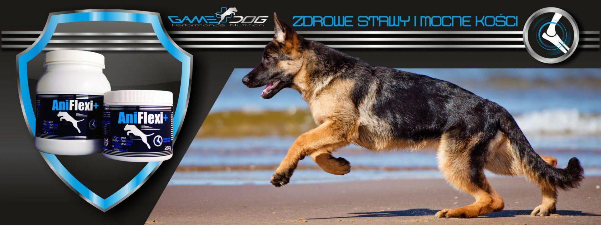 Nowa marka suplementów dla psów GAME DOG