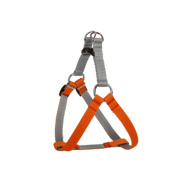 dingo-szelkki-dla-sa-szaro-pomarańczowe-silver-energy