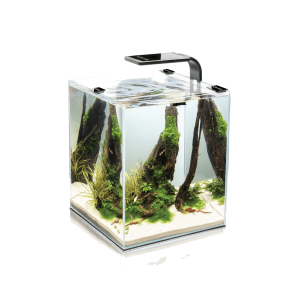 Akwarium AQUAEL Shrimp Set Smart 30 L