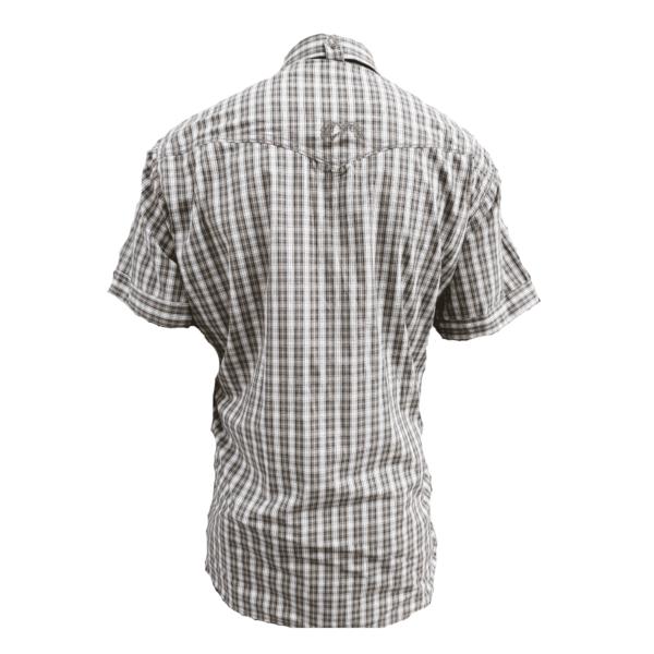 koszula-w-krate-graf-krótki-rękaw