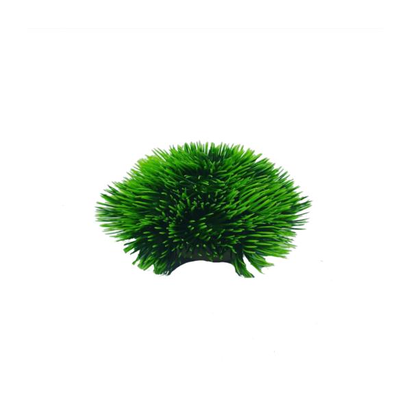 roślinka-kula