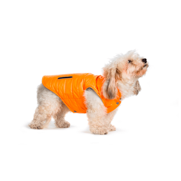 kuuurtka-pomarańczowa-coooomfy